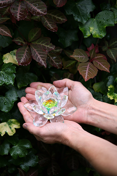 Hands holding a crystal lotus
